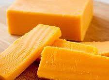 تولید پنیر