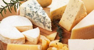تولید عمده انواع پنیر