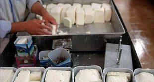 خرید و فروش پنیر لیقوان درجه یک