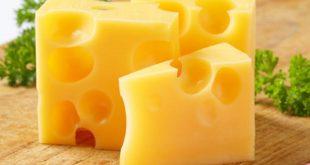 خرید و فروش پنیر چدار سفارشی