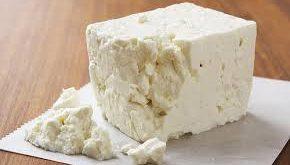 قیمت انواع پنیر