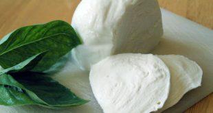 فروش پنیر اصل موزارلا خوب