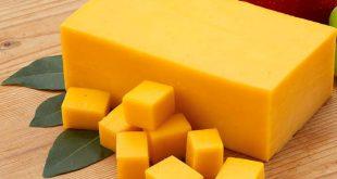 صادرات پنیر پیتزا