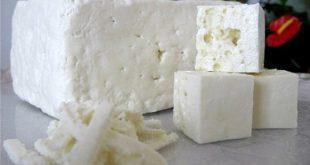 مرکز پخش پنیر لیقوان با بهترین کیفیت