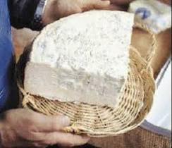 پخش پنیر تبریز