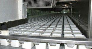 صادرات پنیر لیقوان