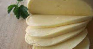 خرید پنیر موزارلا