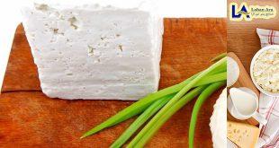خرید فروش پنیر