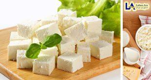 خرید پنیر یک نفره