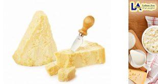 فروش پنیر پارمزان